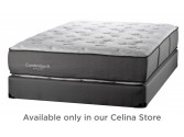 Rosebud Firm Mattress by White Dove